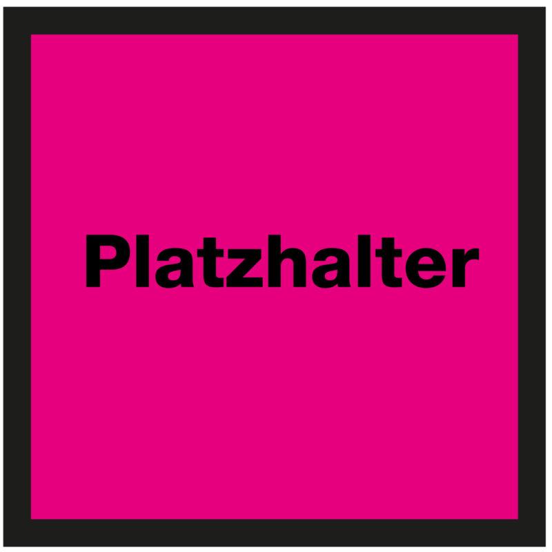 """Jürg Büchi """"Platzhalter"""""""